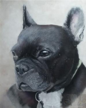 "10"" x 8"" head & shoulder portrait in Soft Pastel on Pastelmat Paper"
